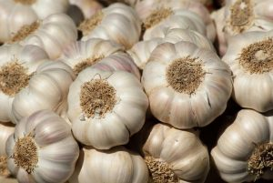 The Big Bad Garlic Myth!