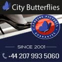 City Butterflies